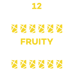 Pack 12 liquides Silver Fruity