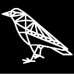 Desert.Raven