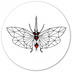 logo lepidoptera the fuu